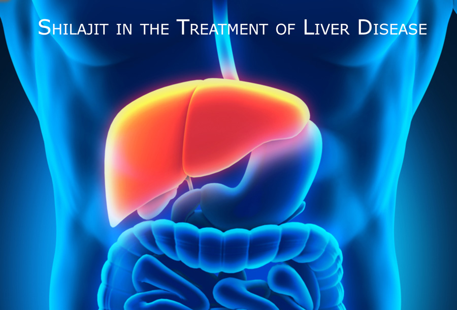 Shilajit in the Treatment of Liver Disease - Shilajit-Resin Com